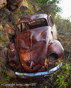 Rusty Volkswagen VW Bug Grunge Car Fine Art by PhotosbyJerryCowart