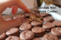 Chocolate Mint Sandwich Cookies Sandwich Cookies, Mint Chocolate, Sandwiches, Treats, Breakfast, Easy, Desserts, Recipes, Food
