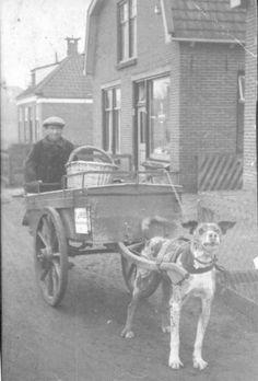 Foppe Sjoerds de Vries met zijn hondenkar, op de Inialoane te Garijp, circa 1930.