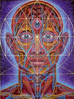 swimminginfrequenciez:  Human Geometry - 2007 - acrylic on linen by Alex Grey