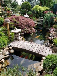 Garden Pond Design, Japanese Garden Design, Modern Garden Design, Japanese Gardens, Japanese Garden Landscape, Japanese Interior, Japanese Garden Backyard, Summer Garden, Japanese Style