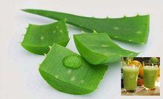Cómo Usar Aloe Vera para Bajar de Peso - Para Más Información Ingresa en: http://trucosparaadelgazarrapido.com/2014/08/14/como-usar-aloe-vera-para-bajar-de-peso/