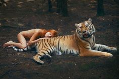 Katerina Plotnikova's amazing photos show wild animals, such as tigers,  posed dangerously close to a young woman.