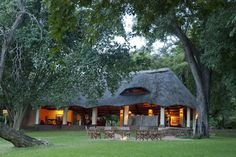 Imbabala Zambezi Safari Lodge offers permanent en-suite stone and thatch lodges, with stunning views of the Zambezi River, in an unfenced private wilderness area. We offer twin, double, honeymooon and family rooms Peaceful Home, Game Lodge, Safari Adventure, Thatched Roof, Walking In Nature, Lodges, Places To Travel, National Parks, Outdoor Structures