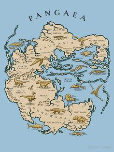 How the actual continents and previous living beings were arranged during Pangea. History Of Earth, World History, Ancient History, European History, American History, Dinosaur History, Fantasy Map, Prehistoric Animals, Historical Maps
