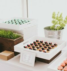 Schaffer's Genuine Foods | The Best Event Catering in Los Angeles