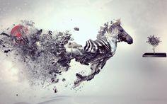 Amazing Zebra Digital Art Animal Best HD Wallpaper Free Download