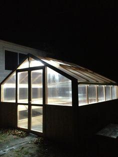 My own aquaponic greenhouse