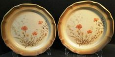"""Mikasa Whole Wheat Jardiniere Dinner Plates 10 3/4"""" E8016 Set of 2 