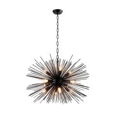 Shop for 12 Light Sputnik Chandelier in Black finish - in. Get free delivery On EVERYTHING* Overstock - Your Online Ceiling Lighting Store! Get in rewards with Club O! Chandeliers, Sputnik Chandelier, Black Chandelier, Chandelier Lighting, Dining Lighting, House Lighting, Bedroom Lighting, Interior Lighting, Kitchen Lighting
