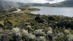 Colombia tendrá mapa nacional de Ecosistemas « Notas Contador
