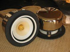 Feastrex full range speakers Diy Bluetooth Speaker, Diy Speakers, Cheap Electronics, Electronics Projects, Horn Speakers, Audiophile Speakers, Audio Design, High End Audio, Loudspeaker