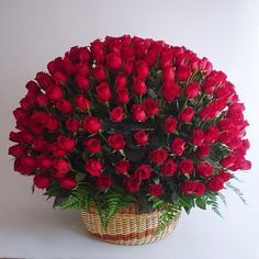 Photos et Langues en ligne — Good morning to all of you. Beautiful Bouquet Of Flowers, Exotic Flowers, Amazing Flowers, Beautiful Roses, Red Flowers, Pretty Flowers, Red Roses, Arrangement Floral Rose, Basket Flower Arrangements