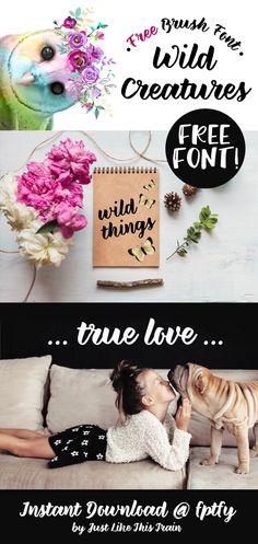 Free Brush Font: Wild Creatures!