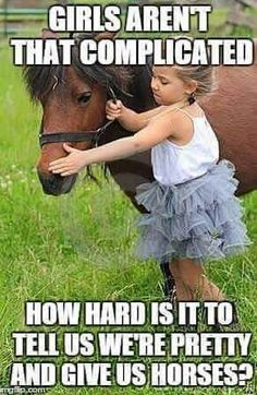 Farm Animals Kids Toys - Horses Funny - Funny Horse Meme - - Girls aren't complicated. How hard is it to tell us we're pretty & give us horses? The post Farm Animals Kids Toys appeared first on Gag Dad. Funny Horse Memes, Funny Horses, Cute Horses, Pretty Horses, Beautiful Horses, Funny Animals, Cute Animals, Horse Humor, Farm Animals