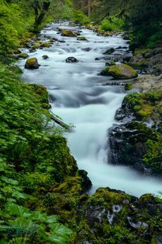 Sol Duc at #olympicnationalpark in #washington state by Luke Ballard on Photographing America 40 city photo workshop tour www.rememberforever.co/america