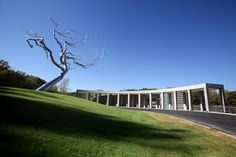 Crystal Bridges with silver tree