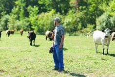 """Kris Karl with his livestock at Karl Family Farms in Modena. Meat from the farm is used at The Huguenot Restaurant in New Paltz, NY. The Huguenot raises the bar on farm-to-table to a symbiotic level that's been dubbed """"farmer-chef-food.""""  (photo: THOMAS SMITH)"""