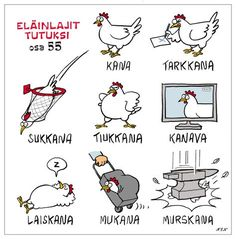 Eläinlajit 55 Finnish Grammar, Finnish Language, Finnish Words, Meanwhile In Finland, Learn Finnish, Language Quotes, Funny Me, Hilarious Stuff, Awkward Moments