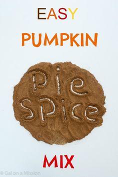 Pumpkin Pie Spice Mix from @galmission