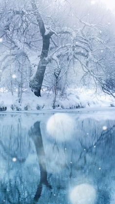 Winter-Snowfall-iphone-5-wallpaper-ilikewallpaper_com.jpg 640×1,136 pixels