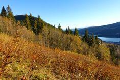Höst I Åre - vandring I Åre oktober