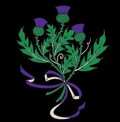 Scotland's National Emblem The Thistle
