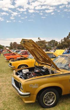 Australian Muscle Cars, Aussie Muscle Cars, Holden Muscle Cars, Holden Torana, Holden Australia, Road Racing, General Motors, Motor Car, Cars And Motorcycles