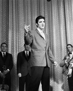 Elvis Presley 8x10 Photo 037   eBay