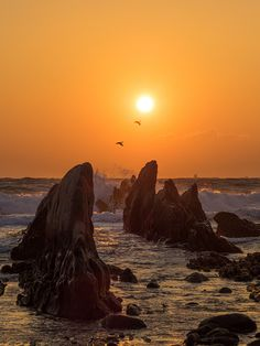 2014年12月30日 根本海岸の夕日 | 自然・風景 > 海の写真 | GANREF