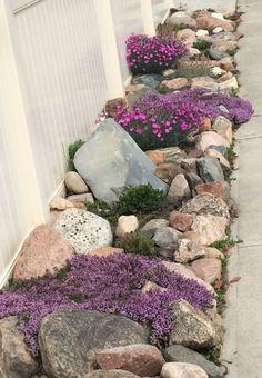 50 Unique Rock Garden Ideas For Backyard - garden landscaping Front Yard Flowers, Ideas Para El Patio Frontal, Rock Garden Plants, Flowers Garden, Indoor Garden, Front Yard Landscaping, Landscaping Ideas, Mulch Landscaping, Inexpensive Landscaping