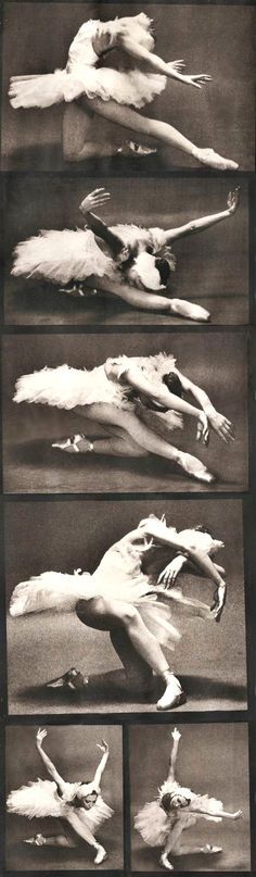 Natalia Makarova in 'The Dying Swan' (by Max Waldman ~ 1975).