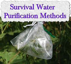 Survival Water Purification Methods