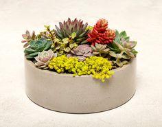 Large Concrete Planter Concrete Bowl by www.opusconcrete.com