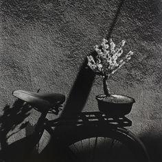 Issei Suda, 'Minowa,' 1977, Miyako Yoshinaga Gallery