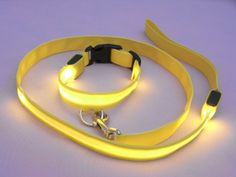 LED Flashing Lights Dog Collar and Leash for early morning runs with my golden doodle I will have some day. Led Dog Collar, Collar And Leash, Collars, Schnauzers, Goldendoodle, Fun Gadgets, Dog Corner, Pet Style, Doggy Stuff