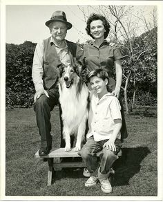 Lassie was a series that followed the adventures of a female Rough Collie dog named Lassie and her companions, human and animal. The show was the creation of producer Robert Maxwell and animal trainer Rudd Weatherwax and was televised from September 12, 1954, to March 25, 1973.