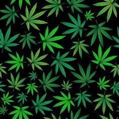 Seamless pattern with green marijuana sheets - Comprar este vetor do stock e explorar vetores semelhantes no Adobe Stock Karim Rashid, Weed Backgrounds, Cannabis Wallpaper, Stoner Art, Bar Design, Stock Foto, Hippie Art, Adobe, Dope Wallpapers