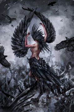 Harpy by Miradge