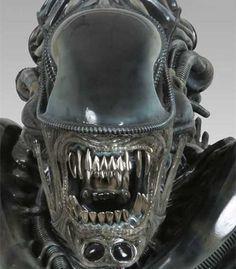 Anatomy's Alien.  Teeth.