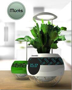 Future technology Concept Pot Moots..informs you when plant needs more water, sunlight, etc.