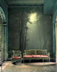 papel tapiz, ideal para mi sala de lectura, asi, tendria mi propia entrada al bosque encantado, negro, magico, o bosque de turno :3 me encanta!!