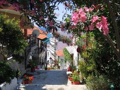 Limenaria Photo from Limenaria in Thassos | Greece.com