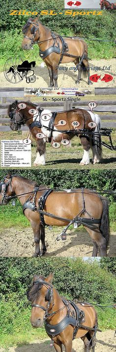Harnesses 72586: Shetland - Small Pony Horse Harness Zilco Sl Sportz Single Pair -> BUY IT NOW ONLY: $488.99 on eBay!