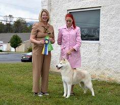 Red & white Siberian Husky female, Moleigh, winning Best of Breed and Group 3.