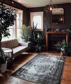 Dark room + Many plants