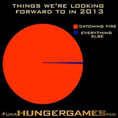 You know you're a Hunger Games fan when...
