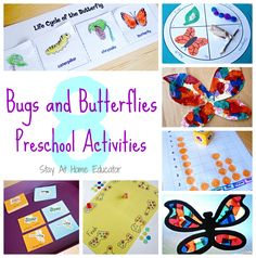 8 bugs and butterflies theme preschool activities - Stay At Home Educator
