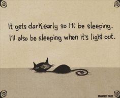 Sleeping patterns... Crazy Cat Lady, Crazy Cats, Cat Jokes, Cat Comics, Cat Behavior, Sleepy Cat, Cat People, Cat Life, Cool Cats