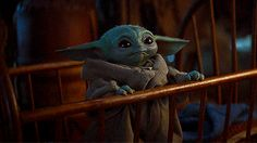 Protect Baby Yoda at all costs. Protect Baby Yoda at all costs. Star Wars Padme, Star Wars Saga, Star Trek, Chewbacca, Sith, Yoda Png, Yoda Images, Love Stars, Cute Characters